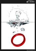 Seal Maker_Poster_2013